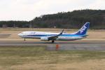 くろネコさんが、庄内空港で撮影した全日空 737-8ALの航空フォト(写真)