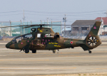 DEE JAYさんが、明野駐屯地で撮影した陸上自衛隊 OH-1の航空フォト(飛行機 写真・画像)
