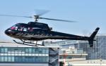 Soraya_Projectさんが、東京ヘリポートで撮影した日本法人所有 AS350B Ecureuilの航空フォト(写真)