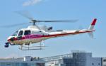 Soraya_Projectさんが、東京ヘリポートで撮影した小川航空 AS350B3 Ecureuilの航空フォト(写真)