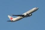 shingenさんが、羽田空港で撮影したJALエクスプレス 737-846の航空フォト(写真)