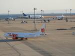 SKY☆MOTOさんが、中部国際空港で撮影したタイ・ライオン・エア 737-9-MAXの航空フォト(写真)