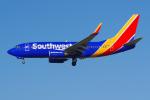 PASSENGERさんが、ロサンゼルス国際空港で撮影したサウスウェスト航空 737-7H4の航空フォト(写真)