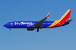 PASSENGERさんが、ロサンゼルス国際空港で撮影したサウスウェスト航空 737-8H4の航空フォト(写真)