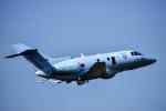 Kenny600mmさんが、名古屋飛行場で撮影した航空自衛隊 U-125A(Hawker 800)の航空フォト(写真)
