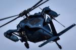 Kenny600mmさんが、名古屋飛行場で撮影した航空自衛隊 UH-60Jの航空フォト(飛行機 写真・画像)