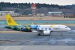 トロピカルさんが、成田国際空港で撮影したロイヤルブルネイ航空 A320-251Nの航空フォト(写真)