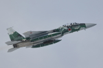 meskinさんが、千歳基地で撮影した航空自衛隊 F-15DJ Eagleの航空フォト(写真)