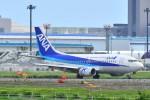 Cherry blossoms さんが、成田国際空港で撮影したANAウイングス 737-54Kの航空フォト(写真)