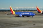 みそらさんが、シアトル タコマ国際空港で撮影したサウスウェスト航空 737-8-MAXの航空フォト(写真)