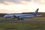 kuro2059さんが、新千歳空港で撮影した全日空 777-381の航空フォト(写真)