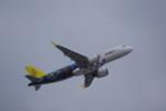 JA8037さんが、成田国際空港で撮影したロイヤルブルネイ航空 A320-251Nの航空フォト(写真)