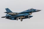 まんぼ しりうすさんが、岐阜基地で撮影した航空自衛隊 F-2Aの航空フォト(写真)