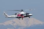 なぞたびさんが、名古屋飛行場で撮影した日本法人所有 AW139の航空フォト(写真)