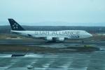 FRTさんが、新千歳空港で撮影したタイ国際航空 747-4D7の航空フォト(飛行機 写真・画像)
