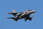 タンちゃんさんが、千歳基地で撮影した航空自衛隊 T-4の航空フォト(写真)
