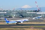 kuraykiさんが、羽田空港で撮影した全日空 787-8 Dreamlinerの航空フォト(写真)