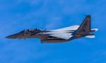 まさおみんさんが、ネリス空軍基地で撮影したサウジアラビア王室空軍 F-15SA Eagleの航空フォト(写真)