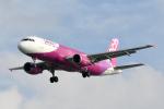 panchiさんが、那覇空港で撮影したピーチ A320-214の航空フォト(写真)