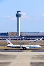 まいけるさんが、羽田空港で撮影した日本航空 767-346/ERの航空フォト(写真)