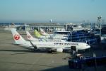 FRTさんが、中部国際空港で撮影した日本航空 767-346/ERの航空フォト(飛行機 写真・画像)