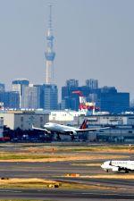 まいけるさんが、羽田空港で撮影したフィリピン航空 A330-343Eの航空フォト(写真)