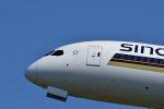 くーぺいさんが、成田国際空港で撮影したシンガポール航空 787-10の航空フォト(写真)