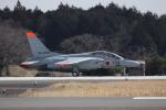Nyankoさんが、茨城空港で撮影した航空自衛隊 T-4の航空フォト(写真)