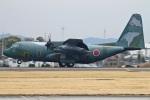 MOR1(新アカウント)さんが、名古屋飛行場で撮影した航空自衛隊 C-130H Herculesの航空フォト(写真)