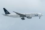 みぐさんが、新千歳空港で撮影した全日空 777-281の航空フォト(写真)