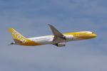 JA8037さんが、成田国際空港で撮影したスクート 787-9の航空フォト(写真)