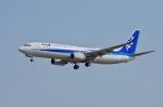 kunikuni5150さんが、大館能代空港で撮影した全日空 737-881の航空フォト(写真)
