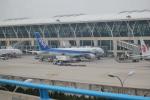 keitsamさんが、上海浦東国際空港で撮影した全日空 767-381/ERの航空フォト(飛行機 写真・画像)