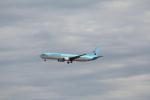 keitsamさんが、成田国際空港で撮影した大韓航空 737-9B5の航空フォト(写真)