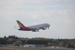 keitsamさんが、成田国際空港で撮影したアシアナ航空 A380-841の航空フォト(飛行機 写真・画像)