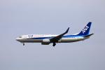 TAKAHIDEさんが、新潟空港で撮影した全日空 737-881の航空フォト(写真)