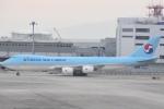 木のピー乃木坂46&DAPUMP好きさんが、関西国際空港で撮影した大韓航空 747-8HTFの航空フォト(写真)