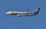 kenko.sさんが、成田国際空港で撮影した全日空 737-881の航空フォト(写真)