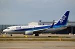 ハピネスさんが、関西国際空港で撮影した全日空 737-781の航空フォト(飛行機 写真・画像)