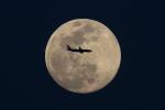 多楽さんが、茨城空港で撮影したアシアナ航空 777-28E/ERの航空フォト(写真)