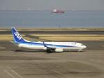 KAZFLYERさんが、羽田空港で撮影した全日空 737-881の航空フォト(写真)