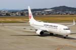 ばっきーさんが、高知空港で撮影した日本航空 737-846の航空フォト(写真)