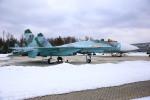 ちゅういちさんが、不明で撮影したロシア空軍 Su-27の航空フォト(写真)