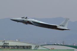 アイトムさんが、名古屋飛行場で撮影した航空自衛隊 F-15J Eagleの航空フォト(写真)