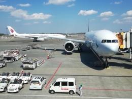はまちのお寿司さんが、成田国際空港で撮影した中国東方航空 A330-343Xの航空フォト(写真)