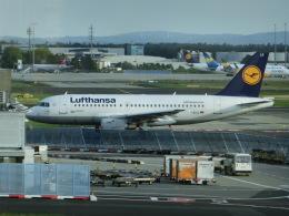ヒロリンさんが、フランクフルト国際空港で撮影したルフトハンザドイツ航空 A319-114の航空フォト(写真)