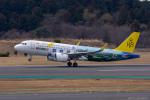 ぱん_くまさんが、成田国際空港で撮影したロイヤルブルネイ航空 A320-251Nの航空フォト(写真)