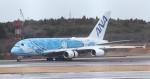 Rsaさんが、成田国際空港で撮影した全日空 A380-841の航空フォト(写真)