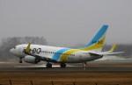 にしやんさんが、帯広空港で撮影したAIR DO 737-781の航空フォト(写真)
