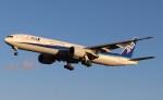 BOEING737MAX-8さんが、成田国際空港で撮影した全日空 777-381/ERの航空フォト(写真)